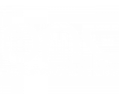 One Chiropractic Studio